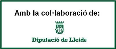 Diputacio_Lleida.jpg