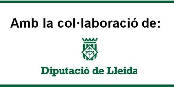SUBVENCIO PLA DE DINAMITZACIÓ LOCAL DE LA DIPUTACIO DE LLEIDA